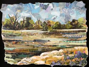 collage river ucd medical center sacramento eileen downes