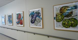 Our Farmers' Treasures by Eileen Downes installed at Kaiser Permanente Hospital Vallejo CA